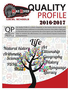 Quality Profile 2017